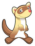 Baby Ferret. Vector Image, software: Illustrator Royalty Free Stock Images