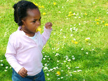 Baby in field with dummy. Black baby girl in a field with a dummy Royalty Free Stock Photos