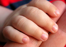 Baby fingers. Closeup photography of baby fingers Stock Photography