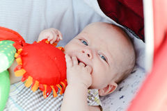 Baby with fingers in mouth Stock Photos