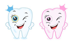 Baby first tooth for boys and girls. Tooth part vector Stock Photos