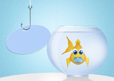 Baby fish Stock Images