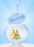 Baby fish with pacifier Stock Image