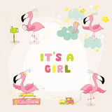 Baby Flamingo Set - Baby Shower or Arrival Card Stock Image