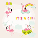 Baby Flamingo Set - Baby Shower or Arrival Card Stock Photo