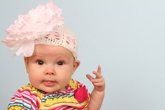 Baby flower Royalty Free Stock Photography