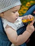 Baby with flower. Close up royalty free stock image