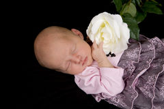 Baby with flower. Sleeping baby with a flower royalty free stock image