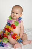 Baby Flower A Stock Image
