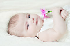 The baby with a flower Stock Image