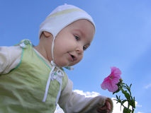 Baby with flower Royalty Free Stock Image