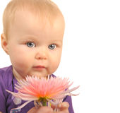 Baby with Flower Royalty Free Stock Images