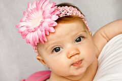 Baby Flower Band. Adorable baby girl with bright eyes posing with a pink flower band royalty free stock photos