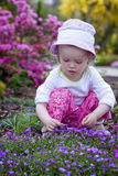 Baby in the flower garden Stock Images