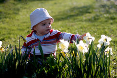 Baby with flowers. Little boy playing with flowers in the garden Royalty Free Stock Images