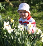 Baby with flowers. Little boy playing with flowers in the garden Royalty Free Stock Photos