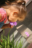 Baby with flowers. Young child smelling a flower spring stock image