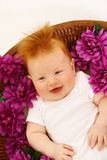 Baby in flowers Royalty Free Stock Photos