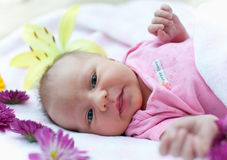 Baby in flowers Stock Photos