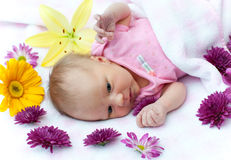Baby in flowers Stock Image