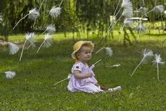 Baby with flying dandelion seeds Stock Photos