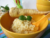 Free Baby Food From Parsnips Royalty Free Stock Photography - 18419737