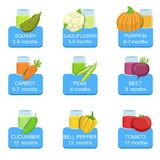 Baby Food Infographic Set Of Stickers Royalty Free Stock Image