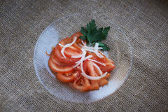 Tomato salad with onions Royalty Free Stock Photography