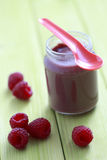 Baby food - raspberries Stock Images