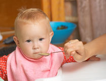 Baby food with a spoon Stock Image