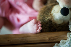 Baby foot. Close up, shallow dof Royalty Free Stock Image