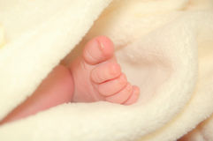 Baby Foot Stock Photography