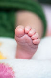 Baby foot Stock Images