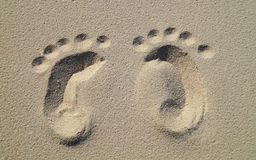 Baby footprints on the beach Stock Photography