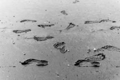 Baby footprints footprint on the wet sand of the ocean stock photography