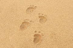 Baby Footprints in the sand. Of a beach Royalty Free Stock Photography
