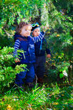 Baby friends in the woods Royalty Free Stock Photo
