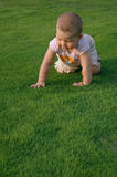 Baby with funny face on grass. Baby on green grass Royalty Free Stock Images