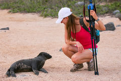 Baby Galapagos sea lion looking at young woman on North Seymour Stock Photo