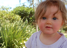 Baby in garden royalty free stock photography
