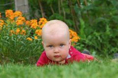 Baby in the garden Royalty Free Stock Photography