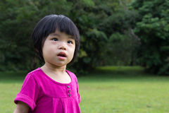 Baby in garden. Portrait of little Asian baby in garden during summer time Stock Images