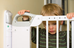 Baby gate. Baby looks through security gate protecting stairs Stock Images