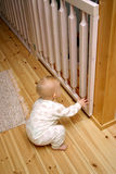 Baby gate closed. Baby approaching baby gate in stairway Stock Images