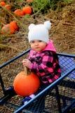 Baby gelukkig in de wagen van het pompoenflard Royalty-vrije Stock Foto's