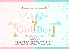 Baby Gender Reveal party. Baby shower. Storks are flying with love Stock Photography