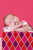 Baby is a gift. Beautiful baby girl who looks like a gift Stock Photography