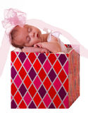 Baby in a gift box. Newborn baby in a gift box, for holidays Royalty Free Stock Photo
