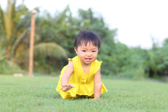 A baby gir crawl on lawn in the park Royalty Free Stock Image