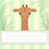 Baby giraffe banner Stock Images